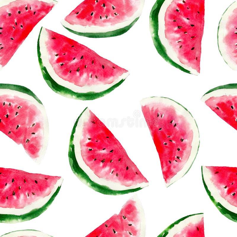 Teste padrão sem emenda da aquarela da melancia Fruto tropical brilhante isolado ilustração stock