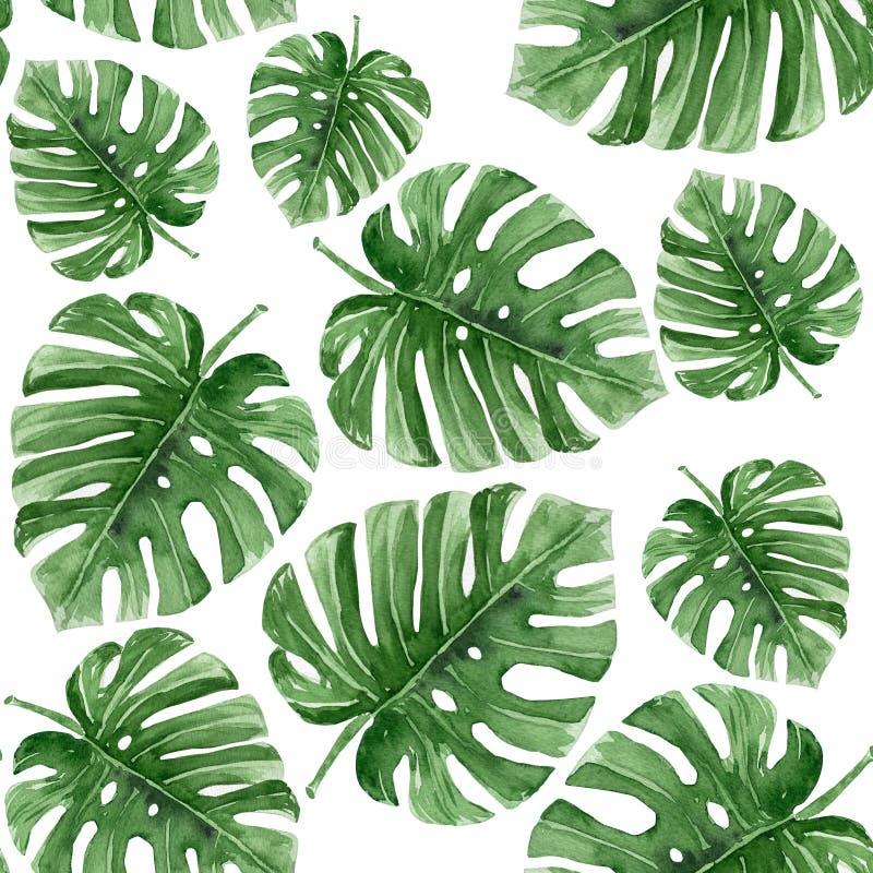 Teste padrão sem emenda da aquarela das folhas tropicais Pintado à mão ilustração do vetor