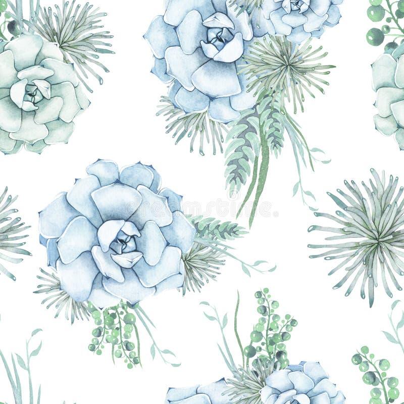 Teste padrão sem emenda da aquarela de flores suculentos delicadas ilustração royalty free