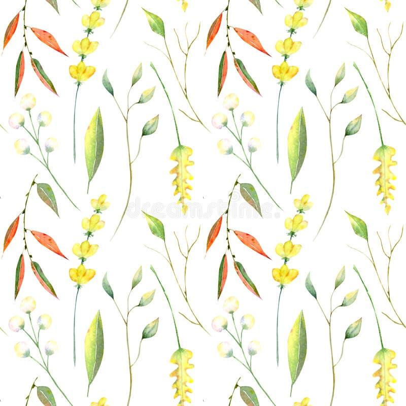 Teste padrão sem emenda da aquarela do outono Folhas, branchs e flores ilustração royalty free