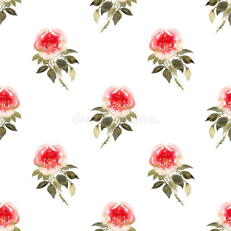 Teste padrão sem emenda da aquarela dos ramalhetes das rosas em amarelo e em vermelho ilustração royalty free