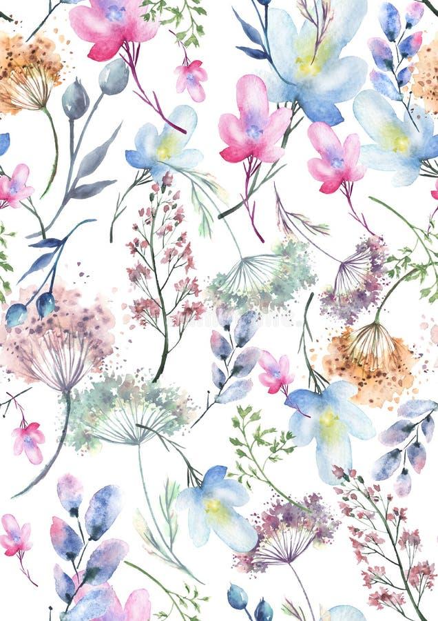 Teste padrão sem emenda da aquarela, fundo com um teste padrão floral Desenhos bonitos do vintage das plantas, flores, ramo do sa ilustração do vetor