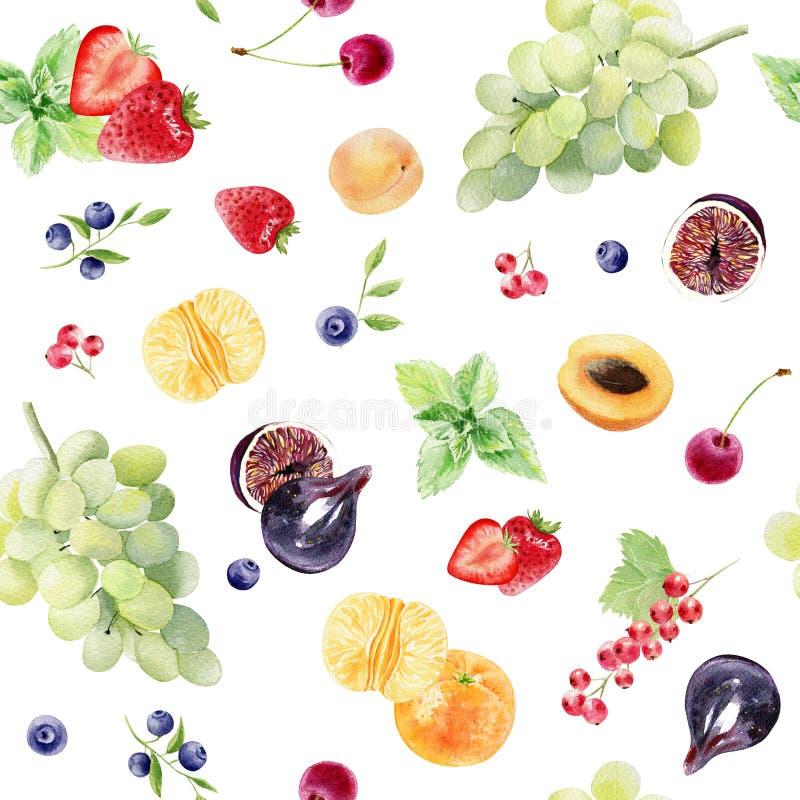 Teste padrão sem emenda da aquarela pintado à mão com frutos e bagas ilustração do vetor