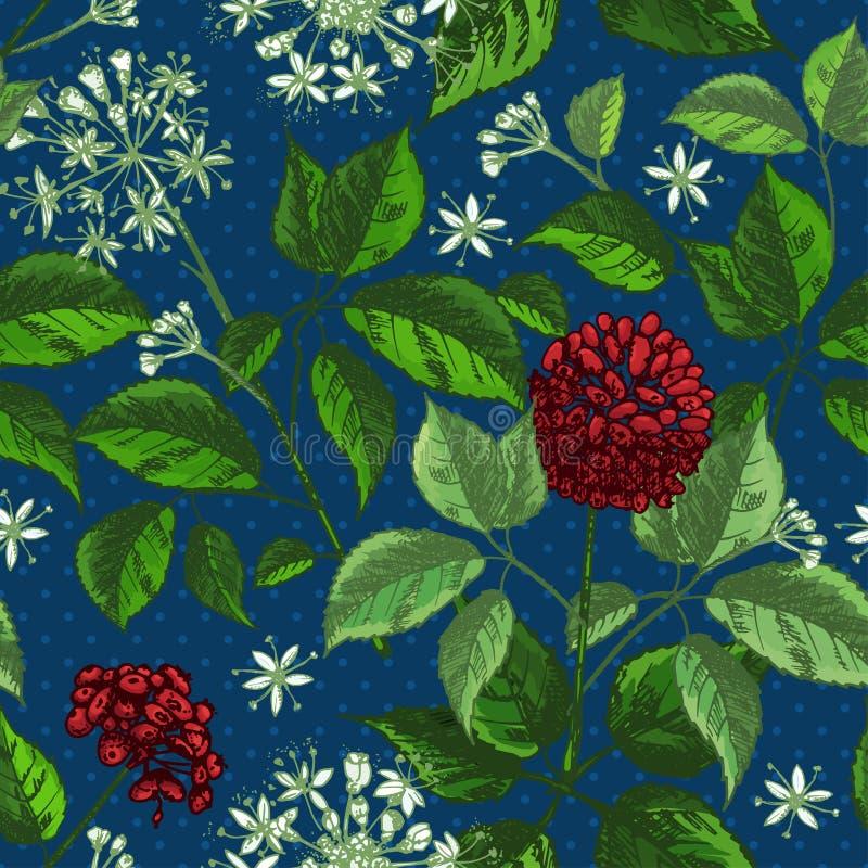 Teste padrão sem emenda da cor do esboço botânico realístico da tinta com coleção floral das ervas da raiz, das flores e das baga ilustração stock