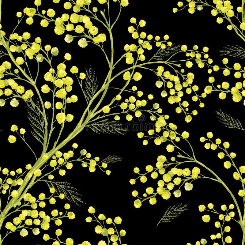 Teste padrão sem emenda da mola com o ramo da mimosa ilustração royalty free