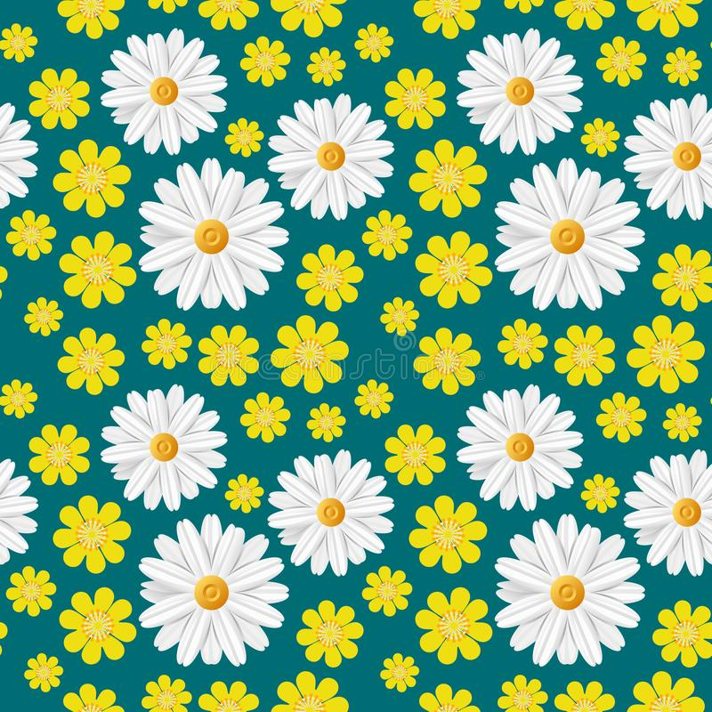 Teste padrão sem emenda da mola verde com flores claras: camomila branca e botão de ouro amarelo isolados na obscuridade - fundo  imagem de stock royalty free