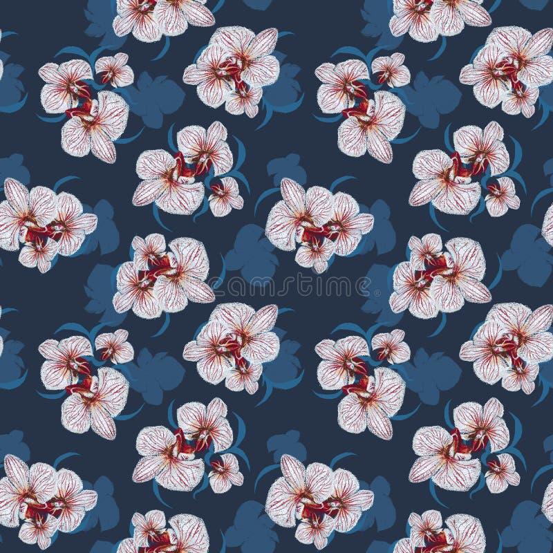 Teste padrão sem emenda da orquídea da flor ilustração royalty free
