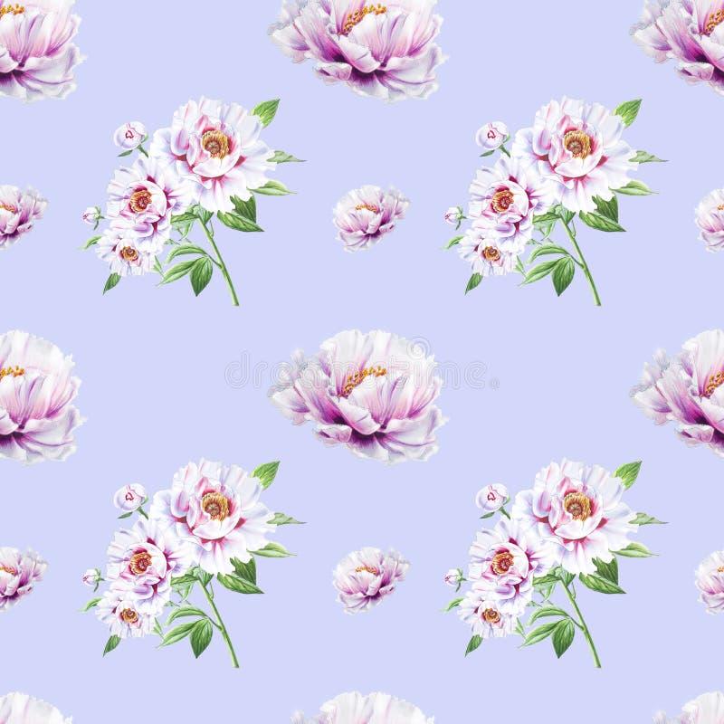 Teste padrão sem emenda da peônia branca bonita Ramalhete das flores Textura floral Desenho do marcador ilustração royalty free
