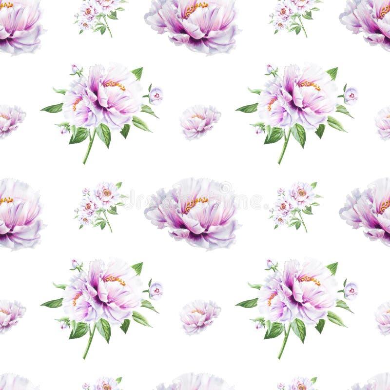 Teste padrão sem emenda da peônia branca bonita Ramalhete das flores Textura floral Desenho do marcador ilustração stock