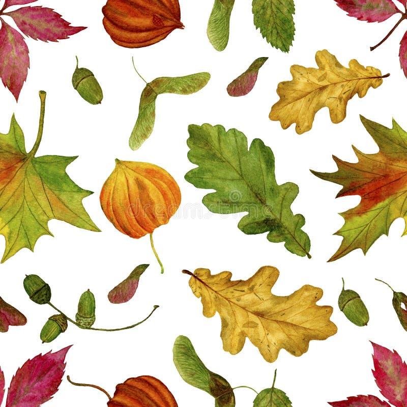 Teste padrão sem emenda da quadriculação com as folhas de outono da aquarela em um fundo branco ilustração do vetor