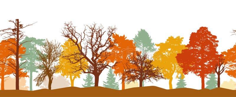 Teste padrão sem emenda da silhueta da floresta do outono Cores brilhantes das árvores Silhuetas de ?rvores desencapadas Ilustra? ilustração do vetor