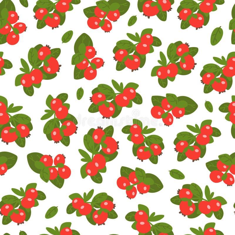 Teste padrão sem emenda das bagas do Lingonberry no fundo branco Baga selvagem com estilo desenhado à mão Ilustra??o do vetor ilustração stock