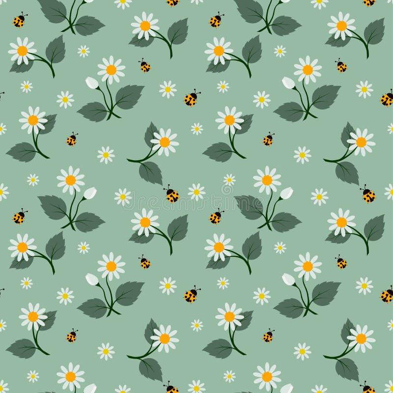 Teste padrão sem emenda das flores brancas com o joaninha no fundo verde macio ilustração stock