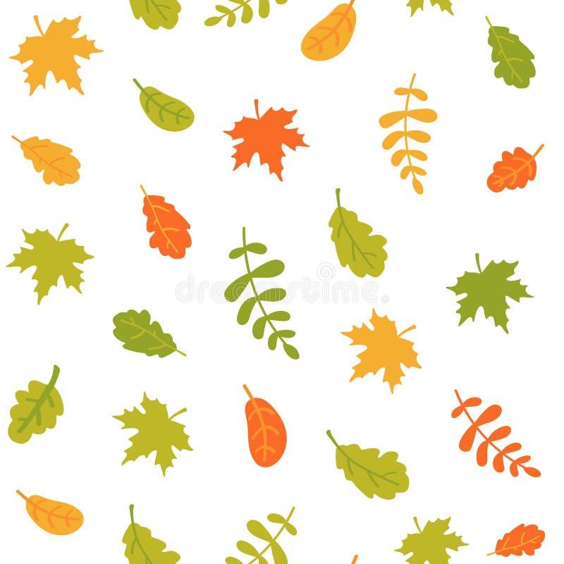 Teste padrão sem emenda das folhas de outono de queda em um fundo branco Folhas coloridas de árvores diferentes Ilustra??o do vet ilustração stock