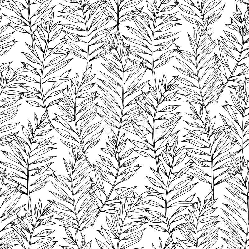 Teste padrão sem emenda das folhas de palmeira da areca do vetor Folha exótica Ilustração botânica Rebecca 36 ilustração do vetor