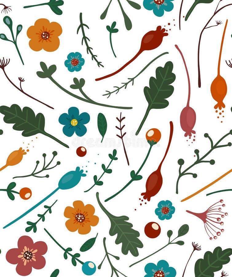 Teste padrão sem emenda das folhas e das bagas das flores ilustração stock