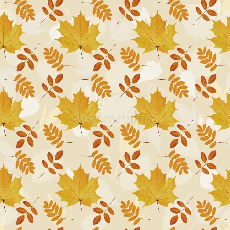 Teste padrão sem emenda das folhas naturais do outono ilustração royalty free