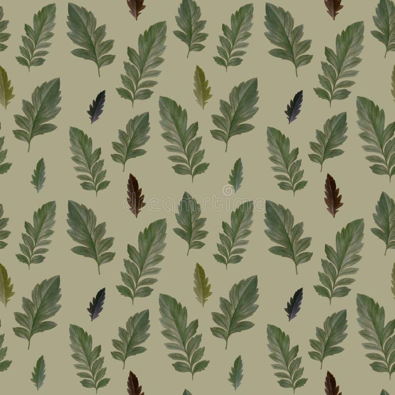 Teste padrão sem emenda das folhas originais no outono ilustração royalty free