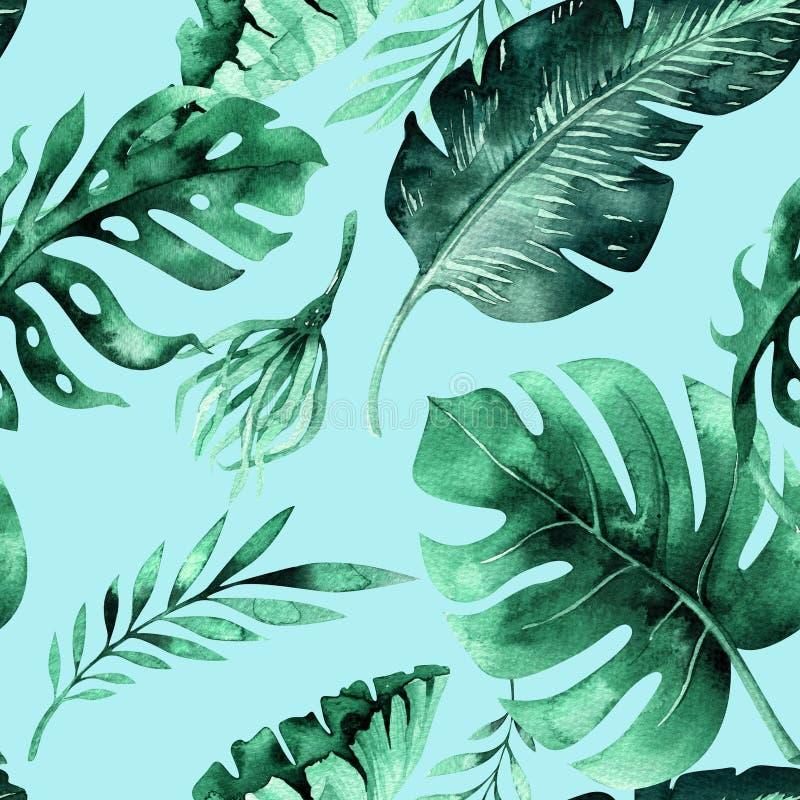 Teste padrão sem emenda das folhas tropicais, selva densa da aquarela Ha ilustração do vetor