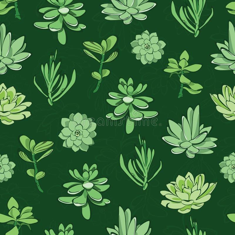 Teste padrão sem emenda das plantas carnudas verdes frescas do vetor ilustração royalty free
