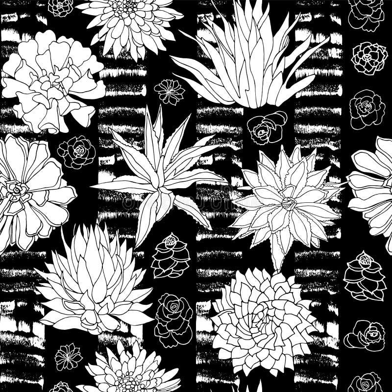 Teste padrão sem emenda das plantas suculentos preto e branco elegantes do vetor em um estilo botânico com fundo textured da list ilustração stock