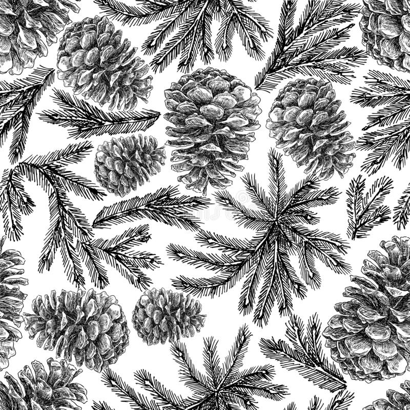 Teste padrão sem emenda de cones de abeto e de ramos do abeto ilustração do vetor