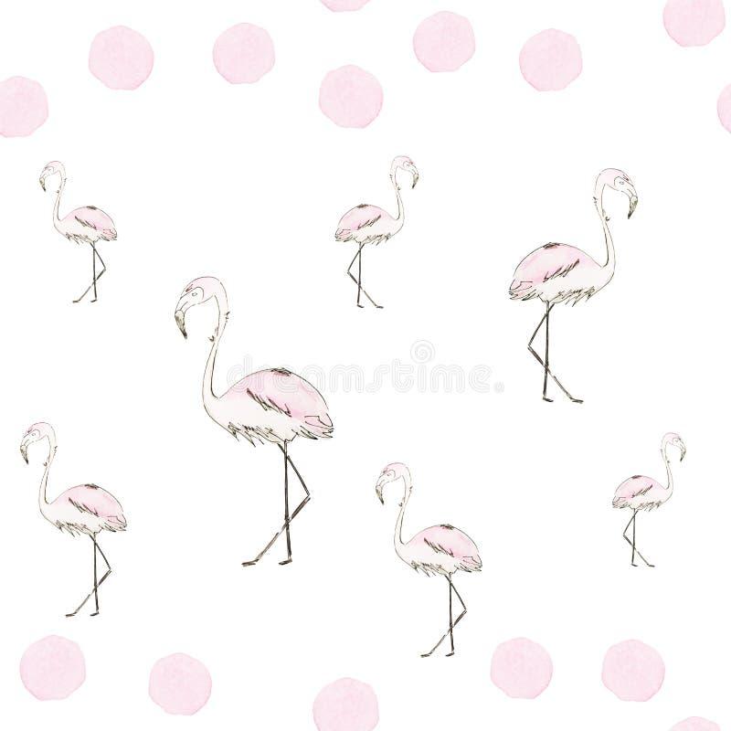 Teste padrão sem emenda de flamingos do rosa da aquarela com esboço preto ilustração stock