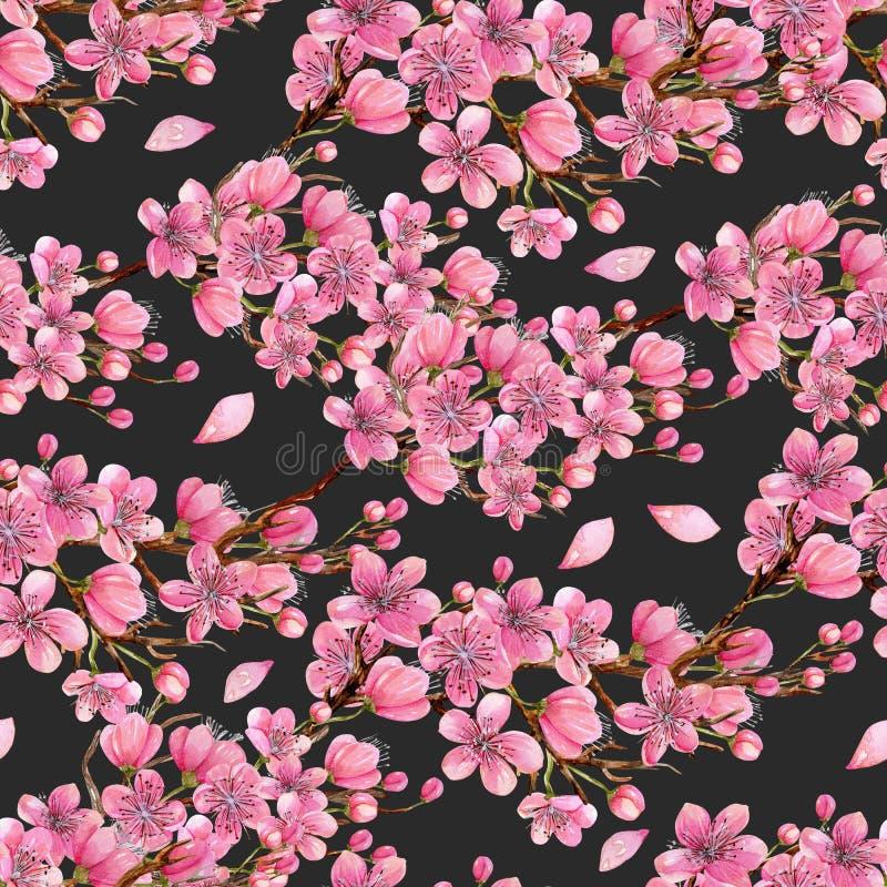 Teste padrão sem emenda de florescência dos ramos de árvore da cereja da mola da aquarela ilustração stock