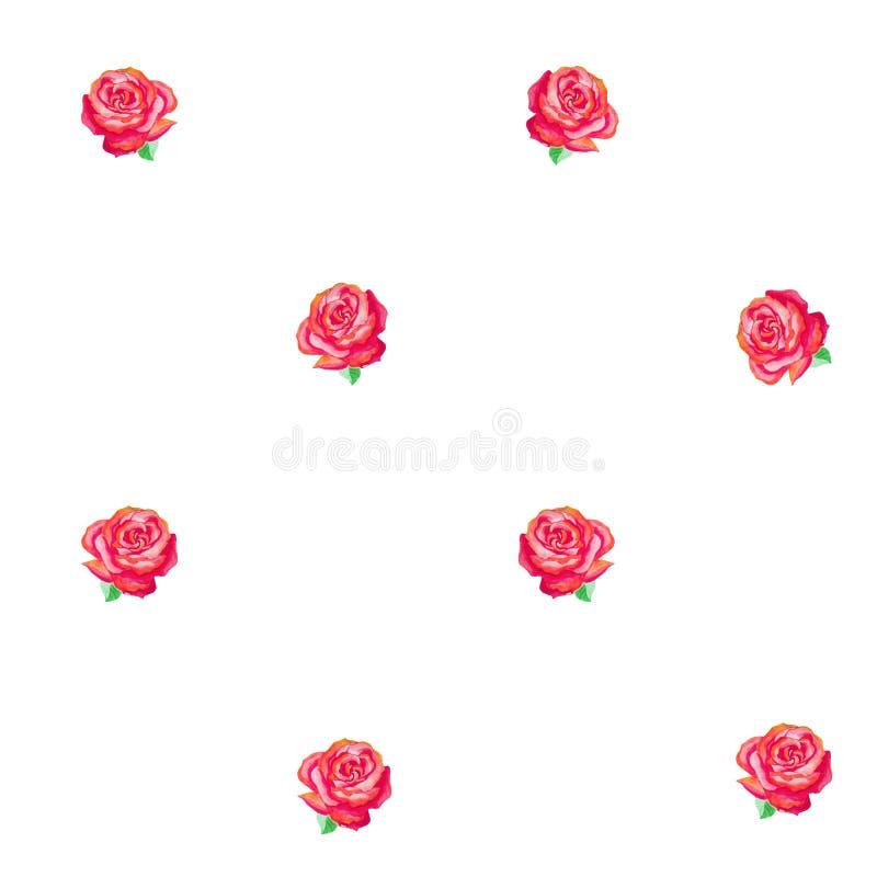 Teste padrão sem emenda de rosas cor-de-rosa com folhas verdes em um fundo branco ilustração do vetor