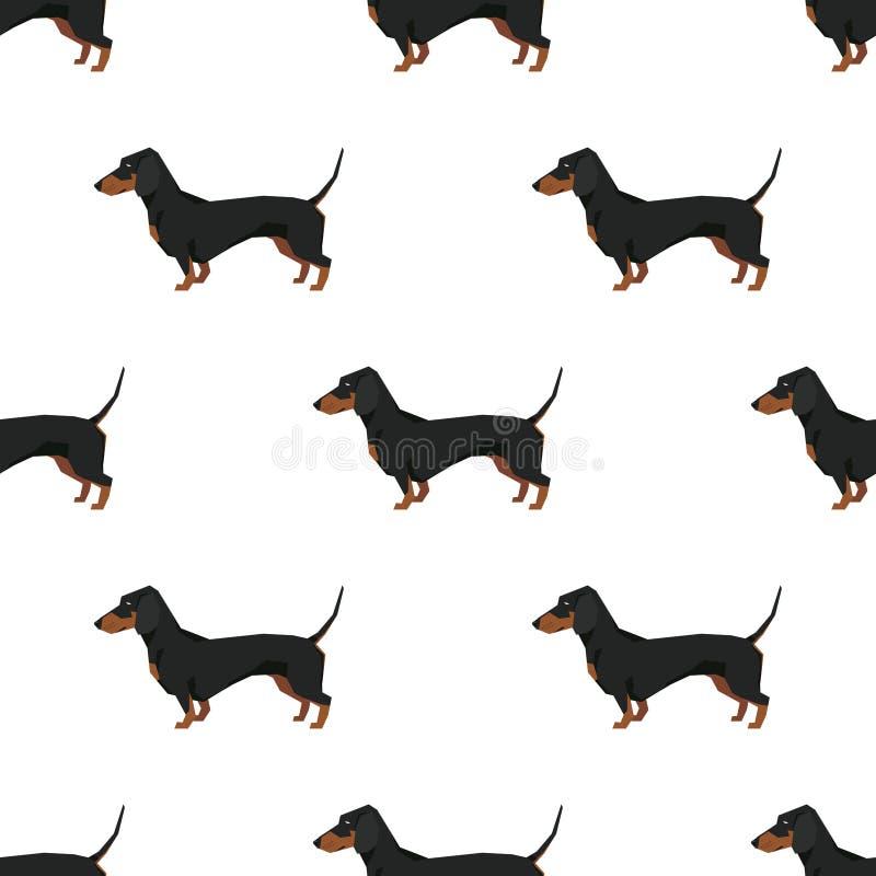 Teste padrão sem emenda do bassê da coleção do cão ilustração royalty free