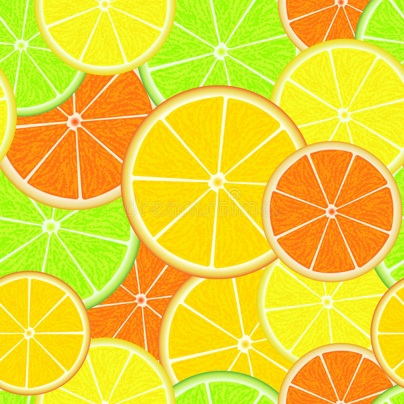 Teste padrão sem emenda do citrino Fatias suculentas frescas da laranja, do limão, da toranja e do cal Fundo do verão ilustração do vetor