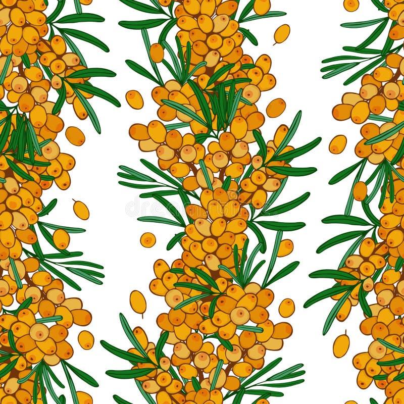 Teste padrão sem emenda do espinheiro cerval de mar Papel de parede infinito Ornamento com bagas do outono ilustração stock