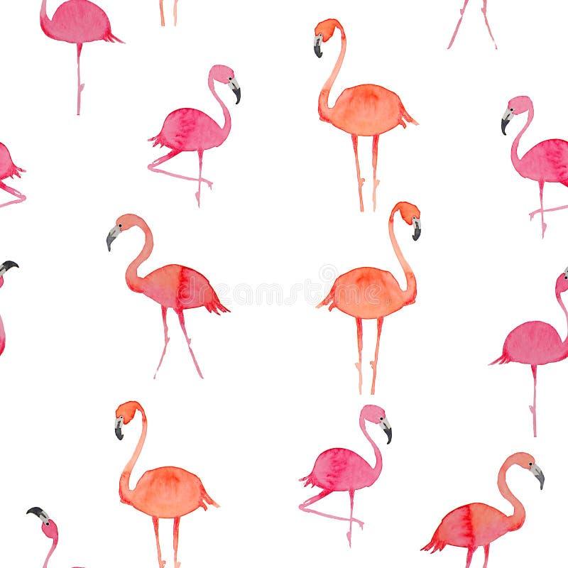 Teste padrão sem emenda do flamingo no fundo branco Pássaro exótico projeto da ilustração para a tela e a decoração ilustração do vetor
