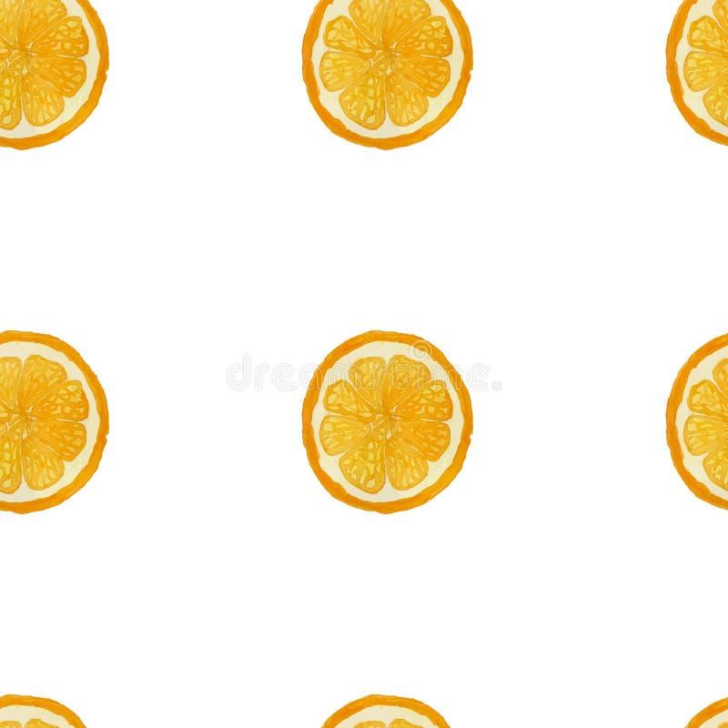 Teste padrão sem emenda do fruto alaranjado da aquarela, imagem do vetor fotos de stock