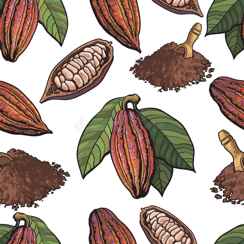 Teste padrão sem emenda do fruto do cacau, feijões, pó no fundo branco ilustração royalty free