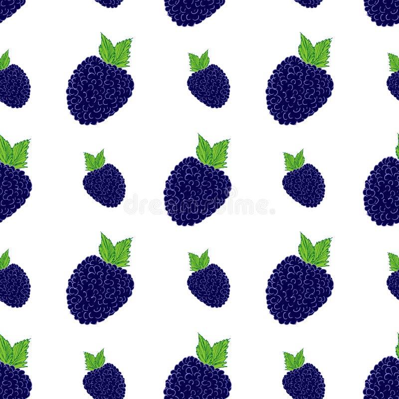 Teste padrão sem emenda do fundo do fruto com ilustração tirada mão do vetor da amora-preta do skech ilustração royalty free