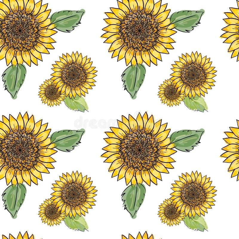 Teste padrão sem emenda do girassol com folhas verdes, imitando a tinta e a aquarela no fundo branco Cabeças de flor desenhados à ilustração stock