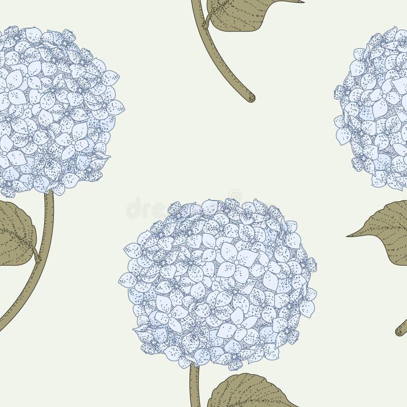 Teste padrão sem emenda do Hydrangea ilustração do vetor