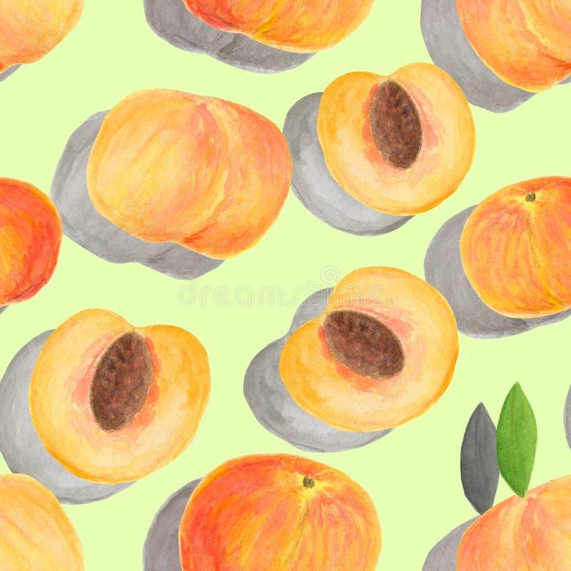 Teste padrão sem emenda do pêssego da aquarela Partes tiradas da mão de frutos isolados no fundo verde pastel com sombras para o  ilustração do vetor