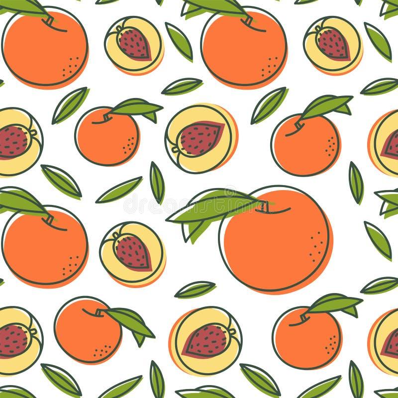 Teste padrão sem emenda do pêssego Fruto exótico fresco tirado mão Fundo do esboço do vetor Papel de parede da garatuja da cor ilustração do vetor