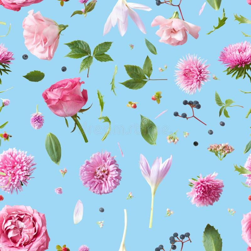 Teste padrão sem emenda do papel de parede da elegância com das flores cor-de-rosa fotografia de stock royalty free