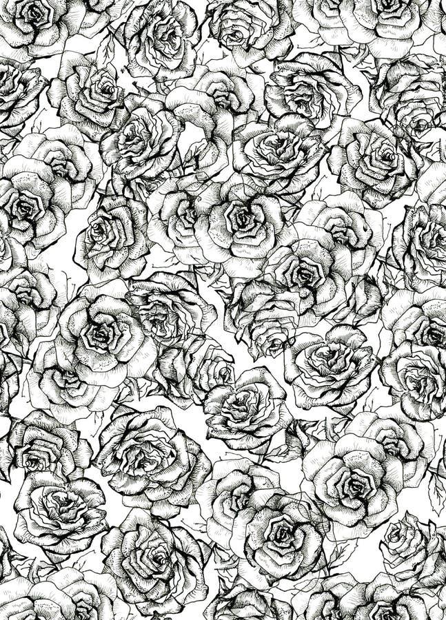 Teste padrão sem emenda do ramalhete do esboço de Rose Flower ilustração royalty free