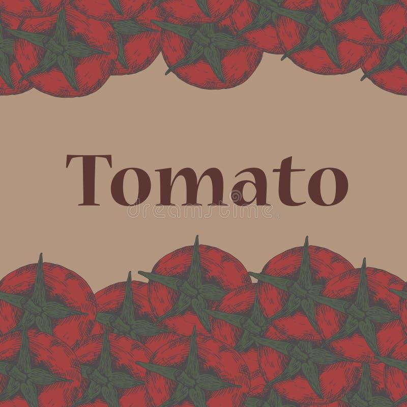 Teste padrão sem emenda do tomate vermelho tirado à mão imagem de stock royalty free