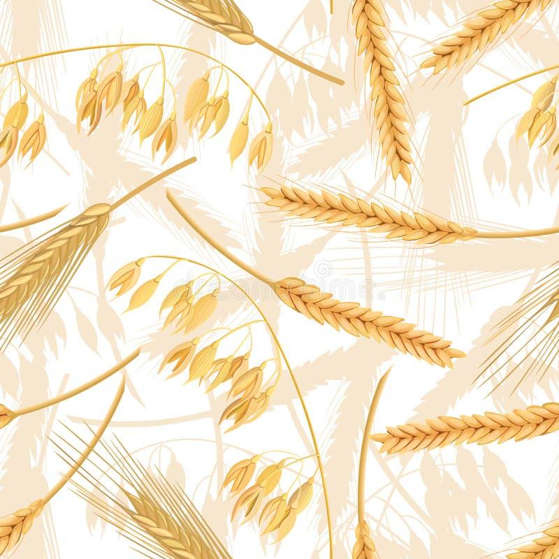 Teste padrão sem emenda do trigo, da cevada, da aveia e do centeio Quatro spikelets dos cereais com orelhas Isolado vetor do ícon ilustração stock