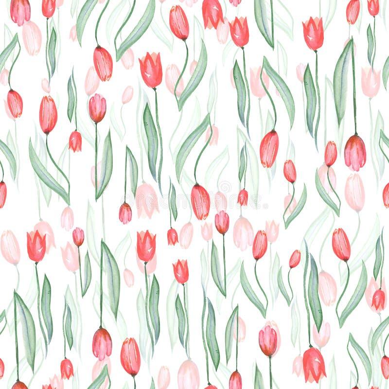 Teste padrão sem emenda do tulipas vermelhas ilustração royalty free
