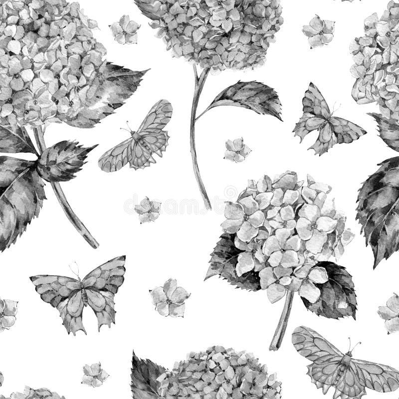 Teste padrão sem emenda do verão da aquarela com hortênsia e as borboletas monocromáticas ilustração royalty free