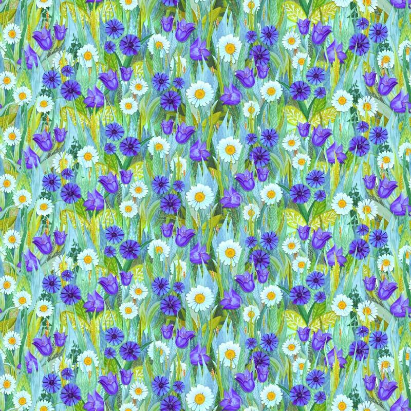 Teste padrão sem emenda do verão das camomilas, centáureas, campainhas na grama ilustração royalty free