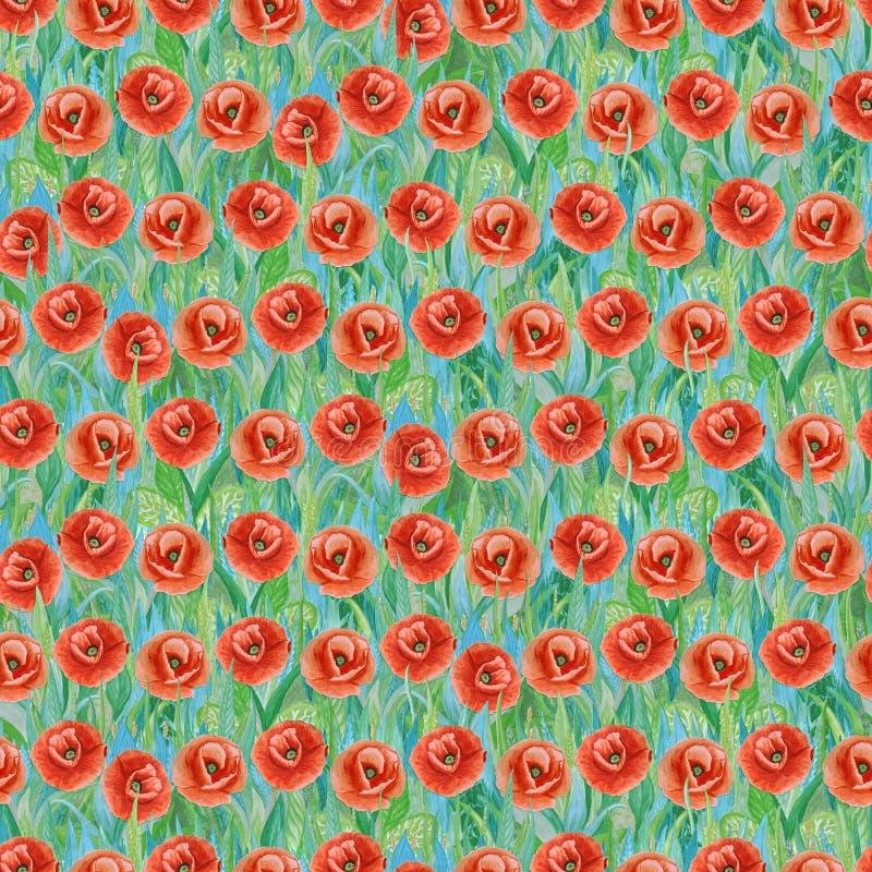 Teste padrão sem emenda do verão de papoilas vermelhas na grama Fundo colorido sob a forma de uma clareira da flor ilustração royalty free