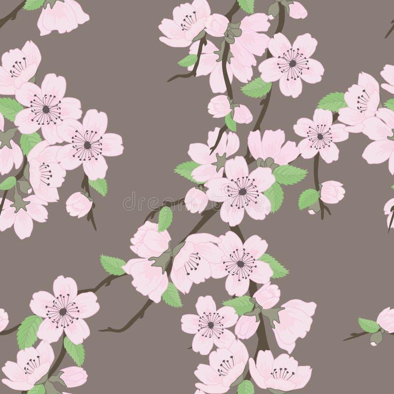 Teste padrão sem emenda do vetor bonito com sakura ilustração royalty free