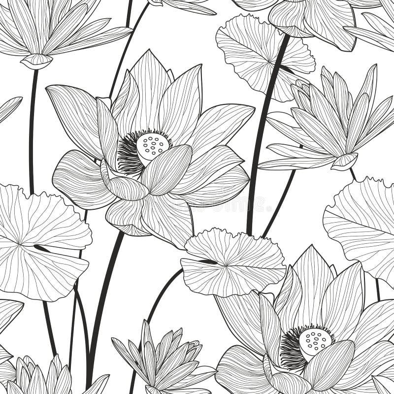 Teste padrão sem emenda do vetor com a flor de lótus bonita Preto e W ilustração do vetor